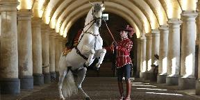 A lovas színházak lenyűgöző világa