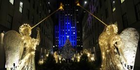 Karátban mért karácsonyfák