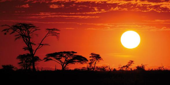 Varázslatos Afrika