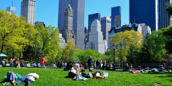 Városi oázisok