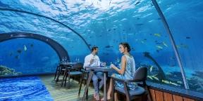 Ilyen a világ legnagyobb üvegfalú tengeralatti étterme